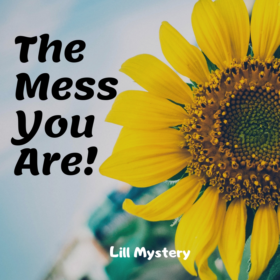 The mess you are!